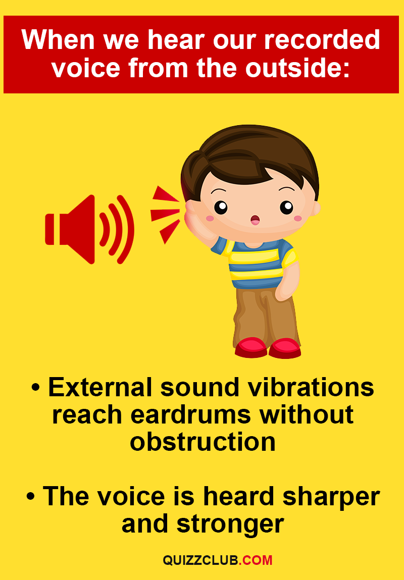 Personality Story: - External sound vibrations reach eardrums without obstruction.  - The voice is heard sharper and stronger.