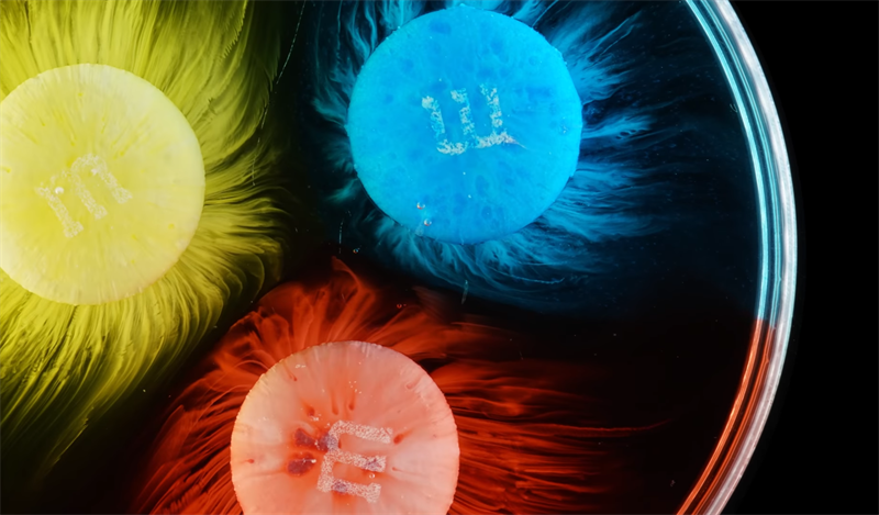 Science Story: The explosion of supernova: M&M'S slow motion dissolving in water