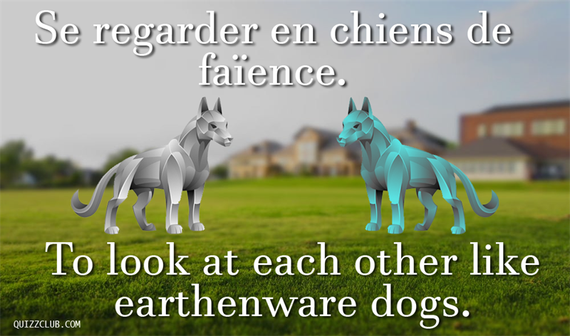 Culture Story: To look at each other like earthenware dogs.