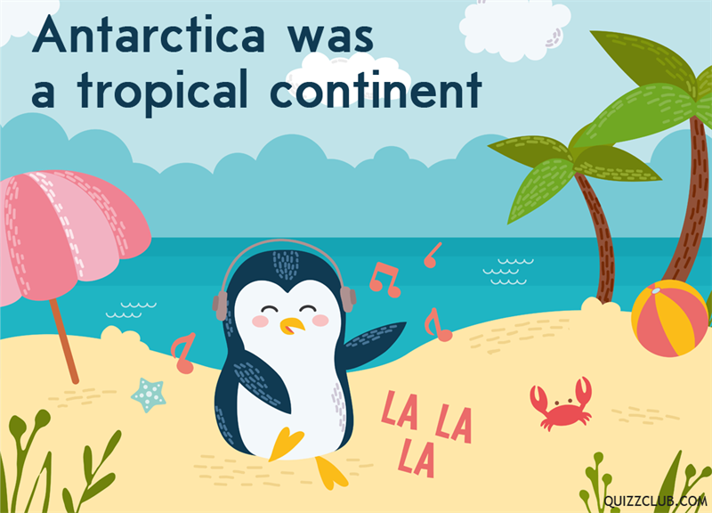 History Story: Antarctica was a tropical continent
