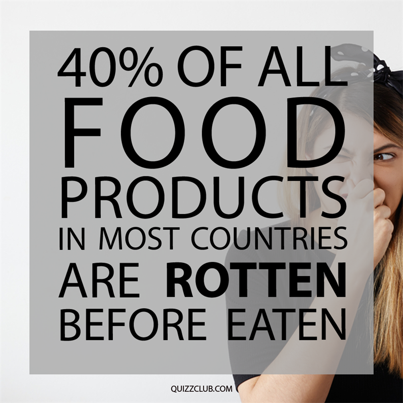 Society Story: 40% of all food products in most countries are rotten before eaten.