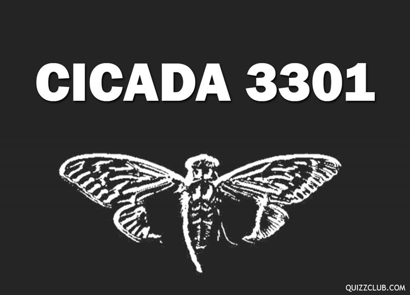 History Story: Cicada 3301