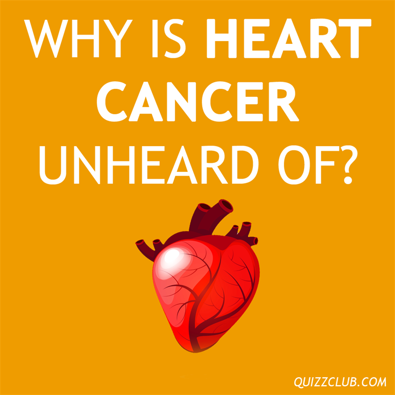 Culture Story: Why is heart cancer unheard of?