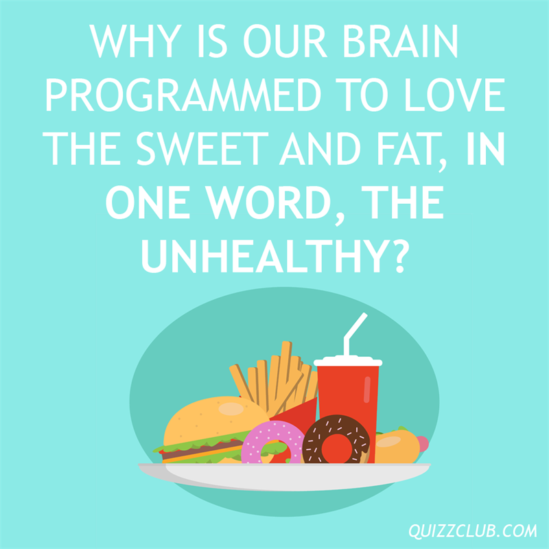 Culture Story: Why is our brain programmed to love the sweet and fat, in one word, the unhealthy?