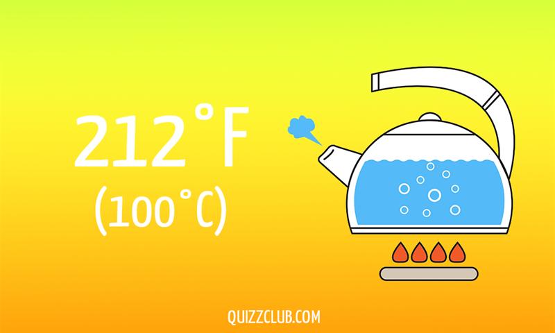 Nature Story: 212°F (100°C)