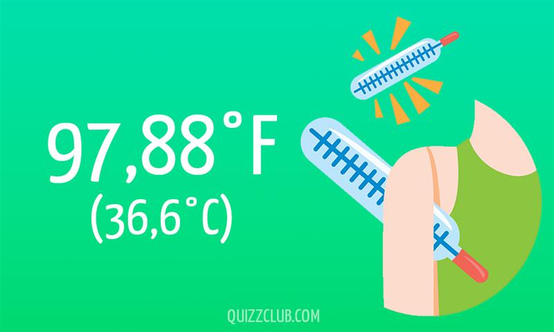 Nature Story: 97,88°F (36,6°C)