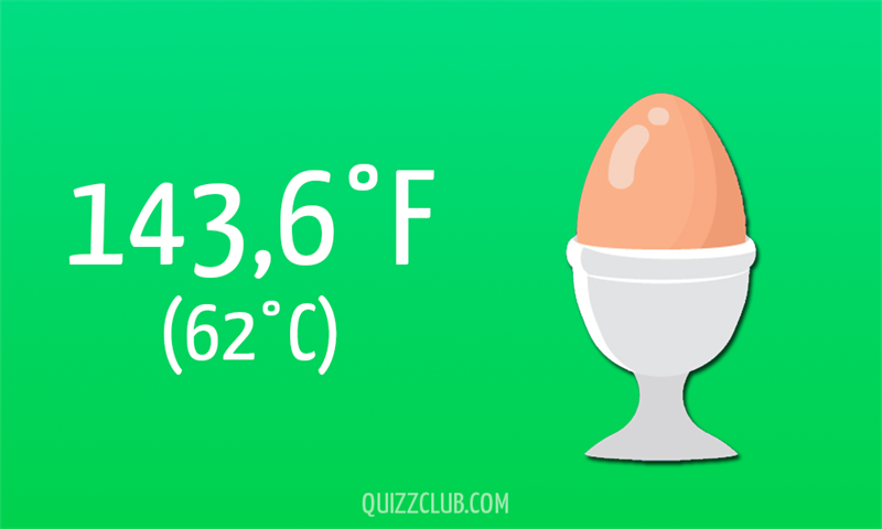 Nature Story: 143,6°F (62°C)