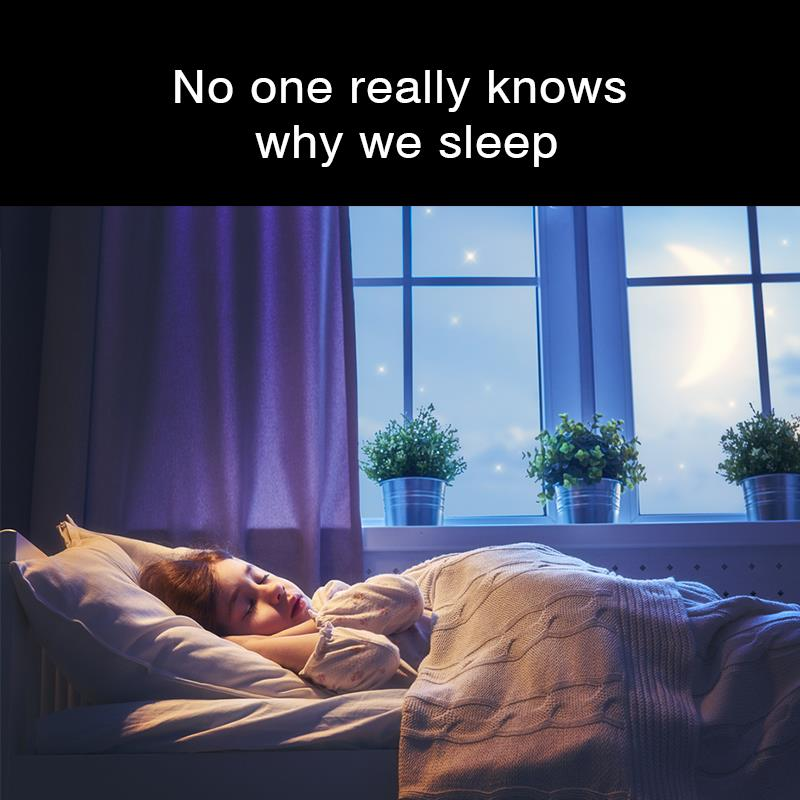 Geography Story: No one really knows why we sleep