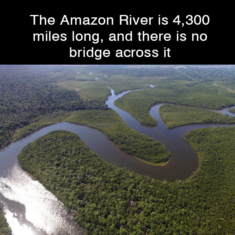 Geography Story: The Amazon River is 4,300 miles long, and there is no bridge across it