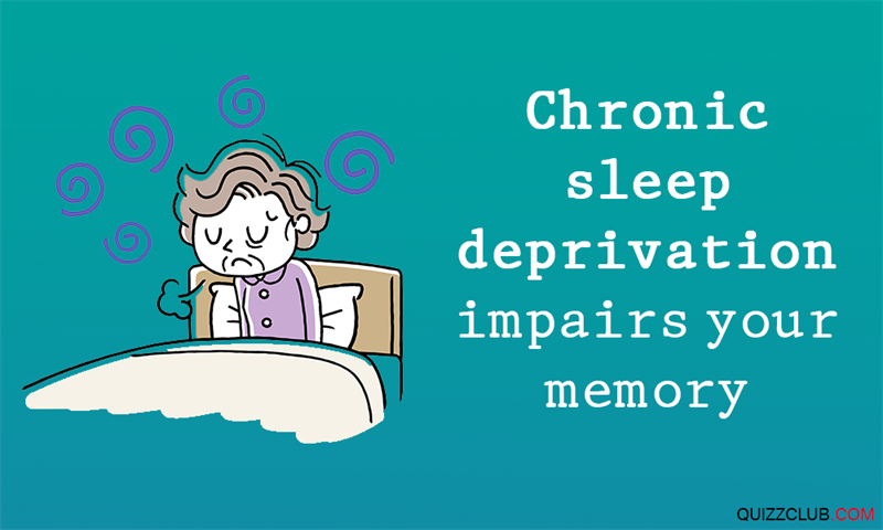 Science Story: #1 Chronic sleep deprivation impairs your memory.