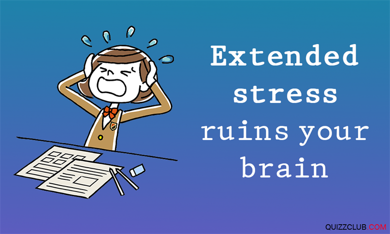 Science Story: #2 Extended stress ruins your brain