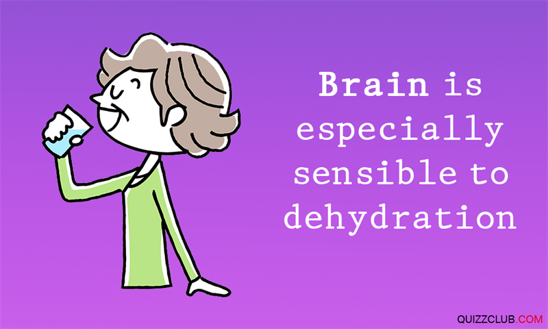 Science Story: #4 Brain is especially sensitive to dehydration
