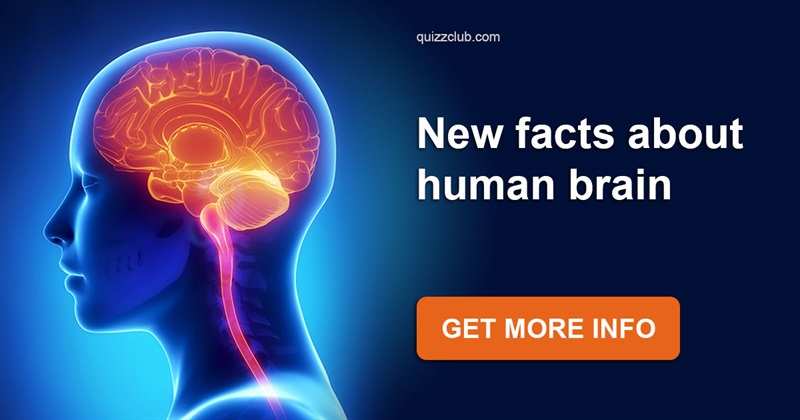Science Story: Find out what really influences your intelligence!