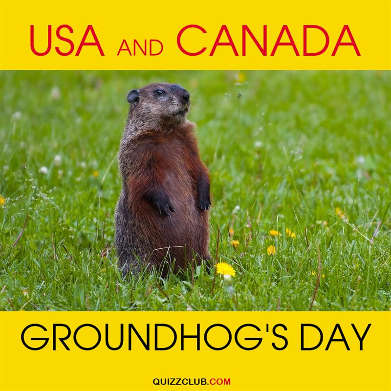 Geography Story: USA and Canada: Groundhog's day