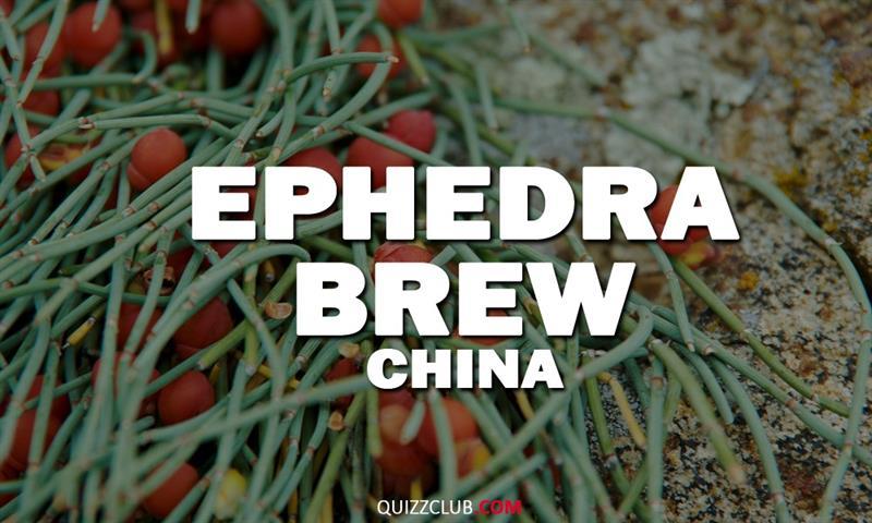 Geography Story: Ephedra brew (China)