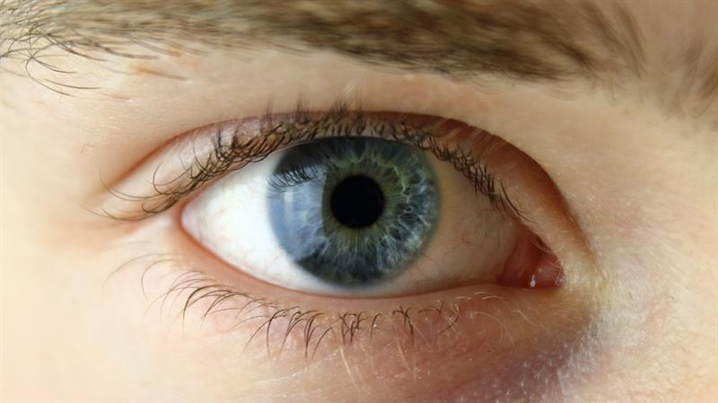 color Story: What can your eyes tell?