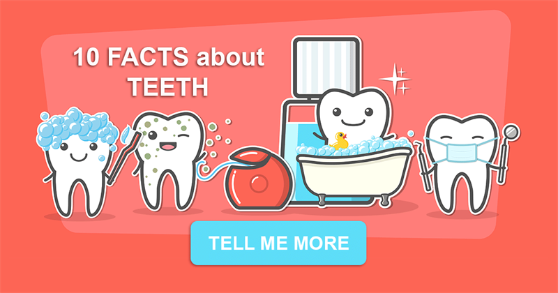 health Story: 10 interesting facts about teeth