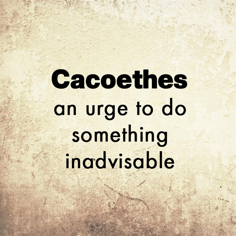 Culture Story: Cacoethes - an urge to do something inadvisable
