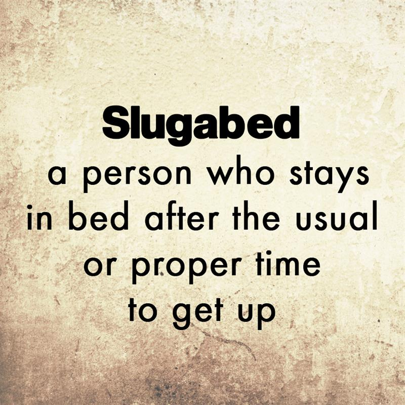 Culture Story: Slugabed - a person who stays in bed after the usual or proper time to get up