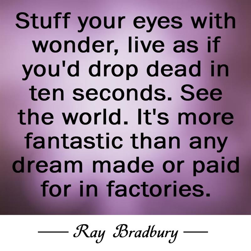 Culture Story: Stuff your eyes with wonder, live as if you'd drop dead in ten seconds. See the world. It's more fantastic than any dream made or paid for in factories.