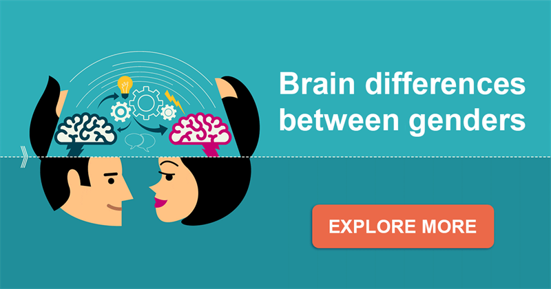 Science Story: 7 key differences between the construction of male and female brain