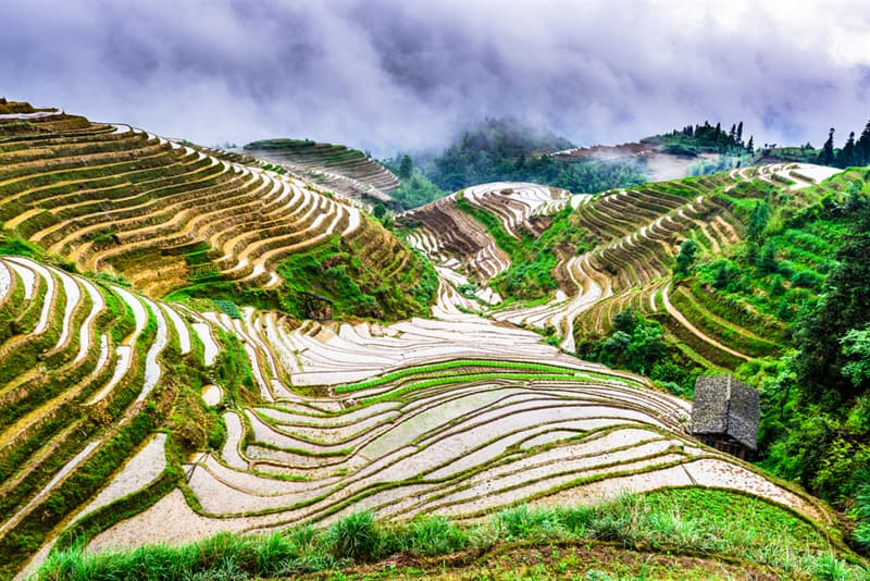 Geography Story: #6 Longji Rice Terraces, China