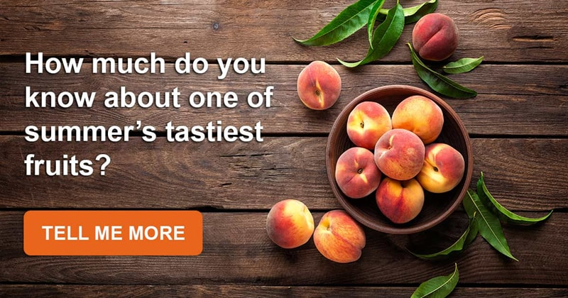 food Story: We bet you don't know these amazing facts about sweet and delicious peaches!