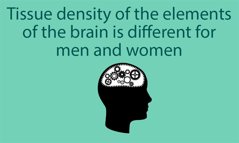 Science Story: Tissue density of the elements of the brain is different for men and women