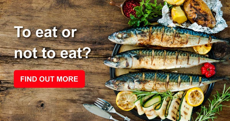 health Story: 7 tips for choosing a great tasting fish for dinner