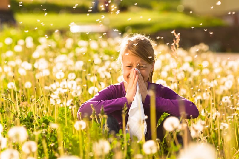 Personality Story: #5 First-born children have higher risks of allergies