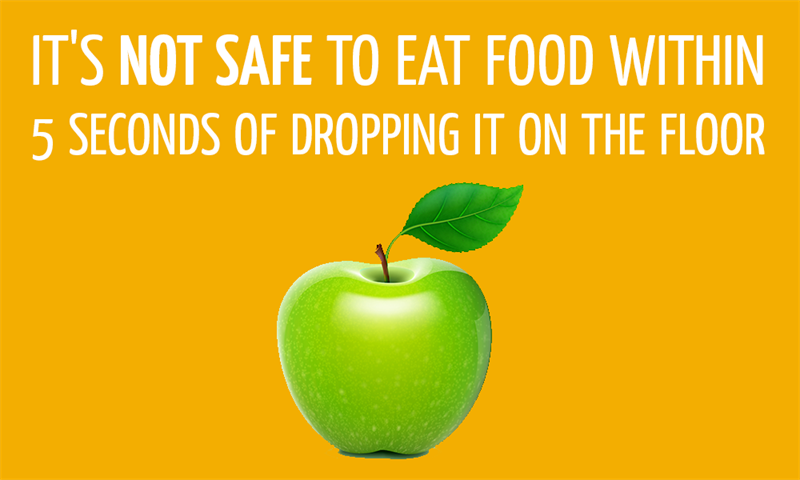 History Story: It's not safe to eat food within 5 seconds of dropping it on the floor