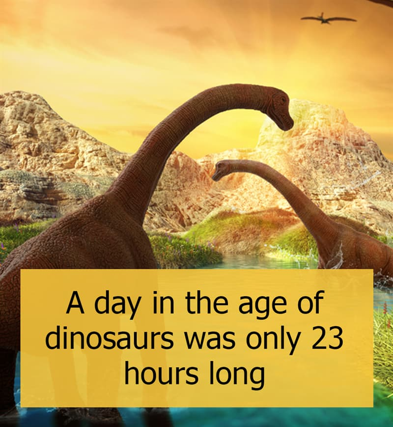 Culture Story: A day in the age of dinosaurs was only 23 hours long