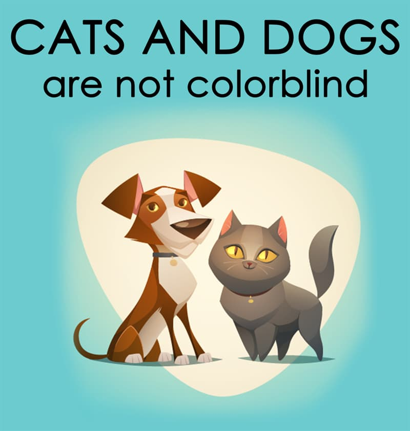 Nature Story: Cats and dogs are not colorblind