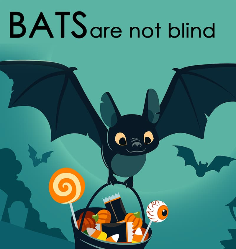 Nature Story: Bats are not blind