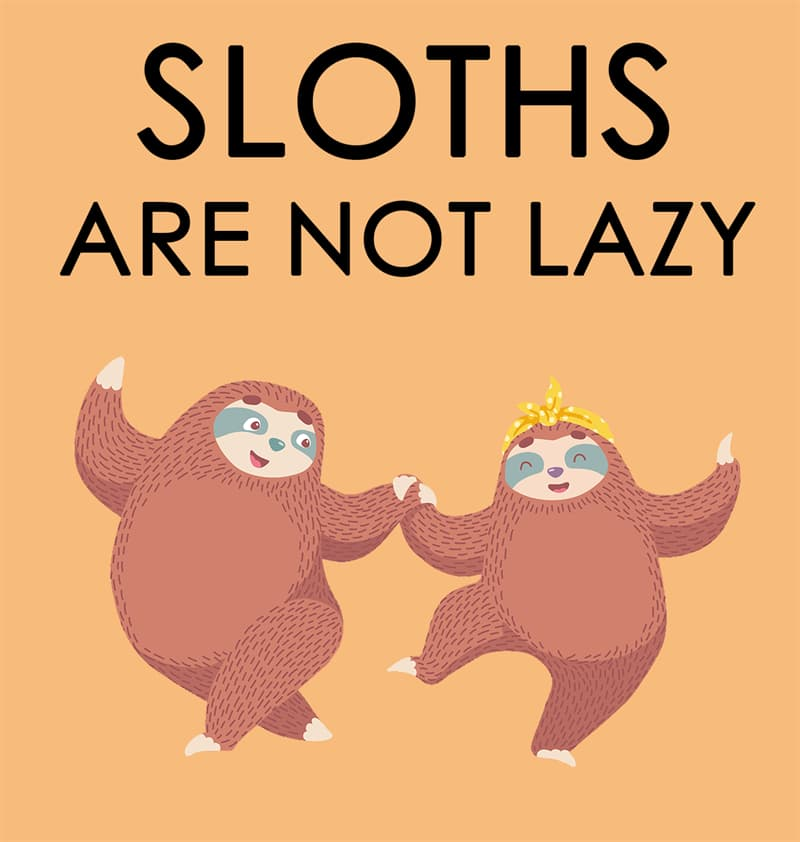 Nature Story: Sloths are not lazy