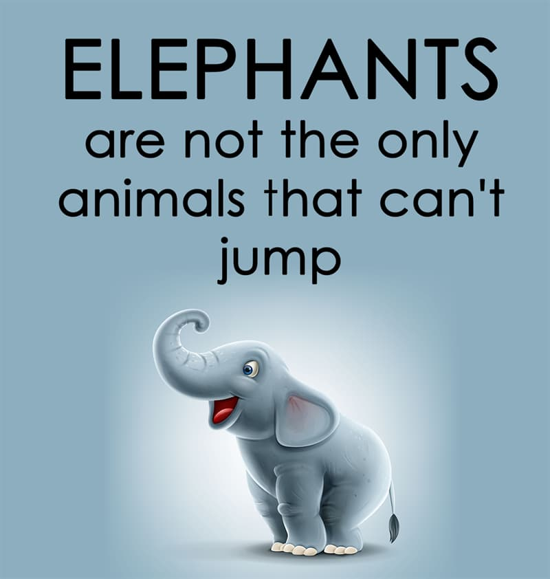 Nature Story: Elephants are not the only animals that can't jump