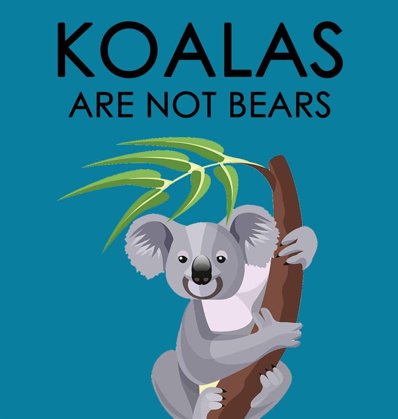 Nature Story: Koalas are not bears