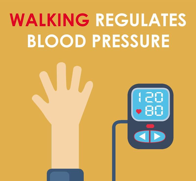 Society Story: It regulates blood pressure