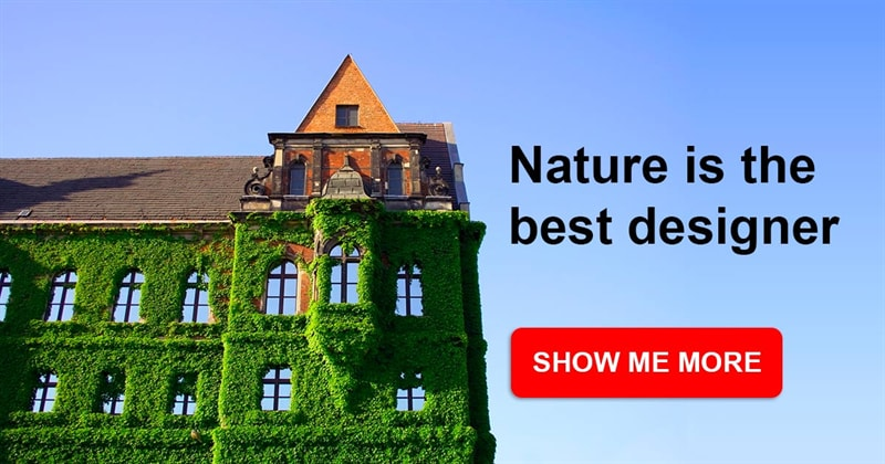 art Story: 8 buildings that prove nature is the best designer