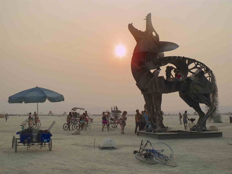 animals Story: #9 A coyote statue, the Burning Man Festival