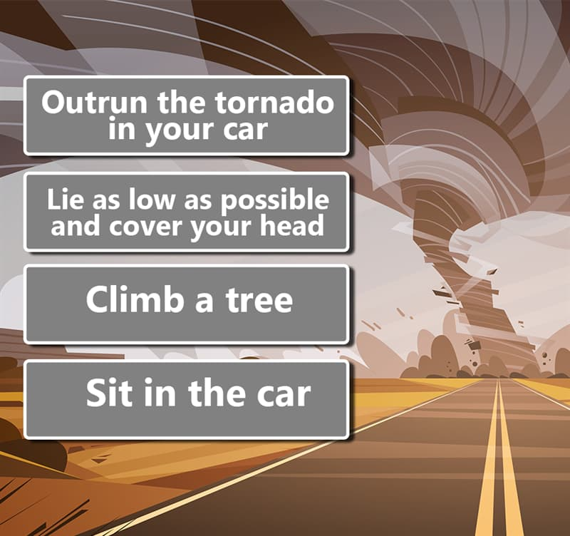 Society Story: 1. Outrun the tornado in your car 2. Lie as low as possible and cover your head 3. Climb a tree 4. Sit in the car