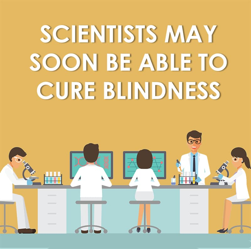 Science Story: Scientists may soon be able to cure blindness
