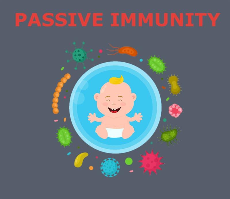 Society Story: Passive immunity