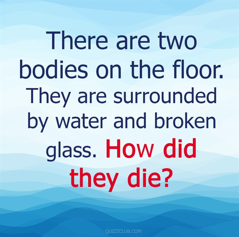 IQ Story: 85% of adults will find these 10 kids' riddles surprisingly hard #1