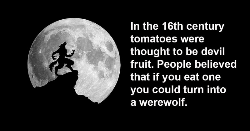 knowledge Story: 9 thought provoking facts that will leave you speechless #8