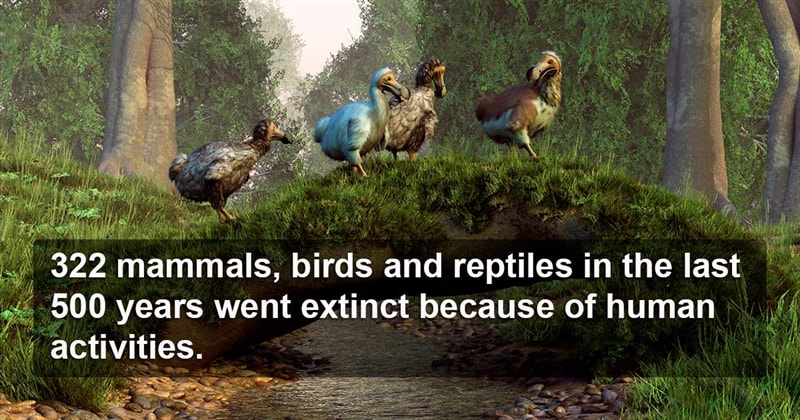 knowledge Story: 9 thought provoking facts that will leave you speechless #9