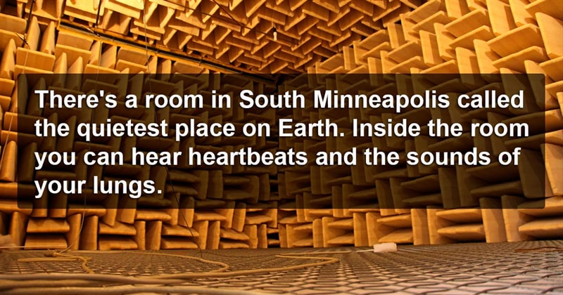 knowledge Story: 9 thought provoking facts that will leave you speechless #7