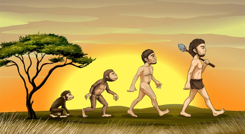 Science Story: In what ways has the human species evolved biologically over the last 1,000 years?
