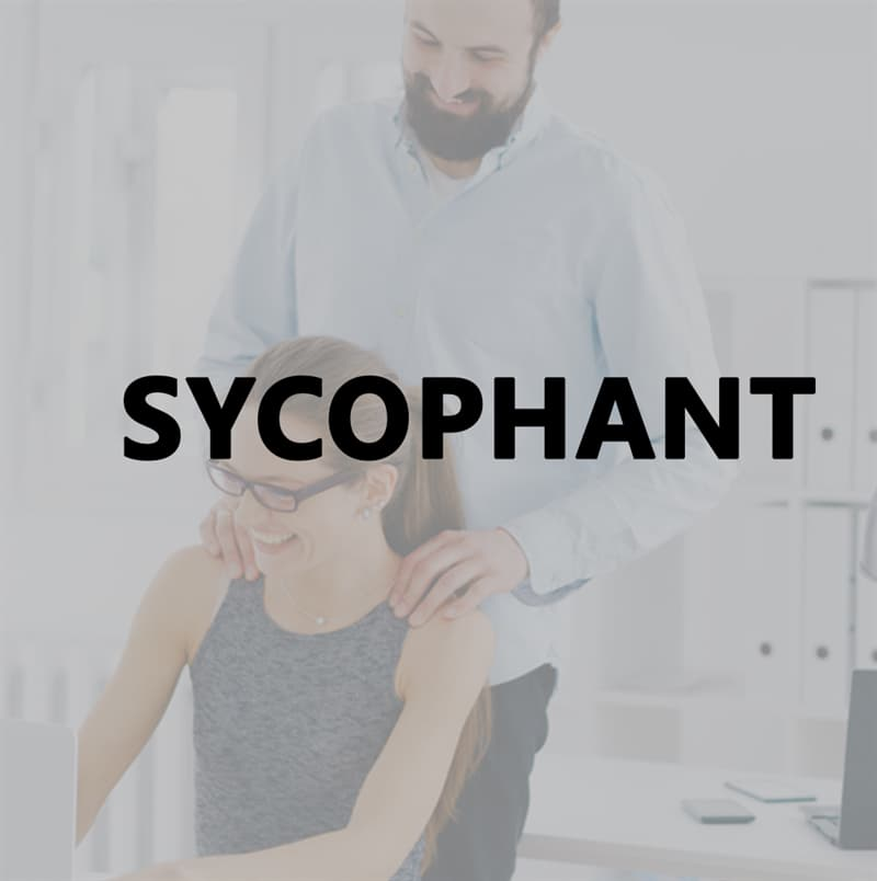 Culture Story: Sycophant