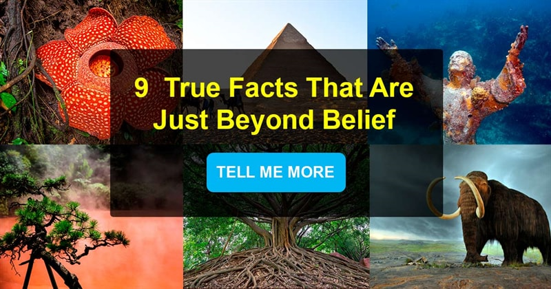 Geography Story: 9  true facts that are just beyond belief